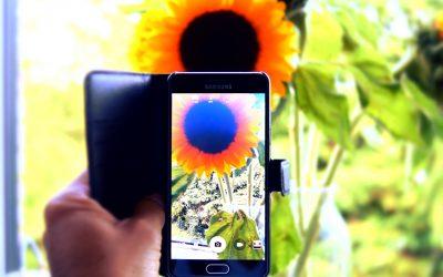 Learn How PlantSnap is Shazam for Plants