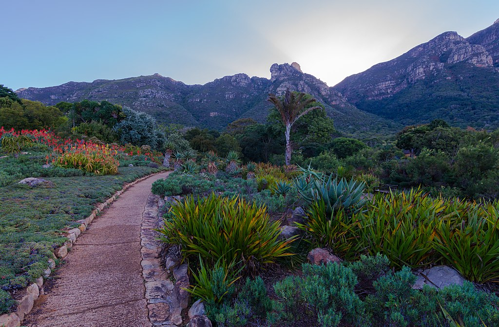 The Best Botanical Gardens in Africa and the Middle East: Jewels in the Desert