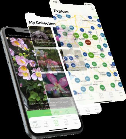 PlantSnap - Plant Identifier App, #1 Mobile App for Plant