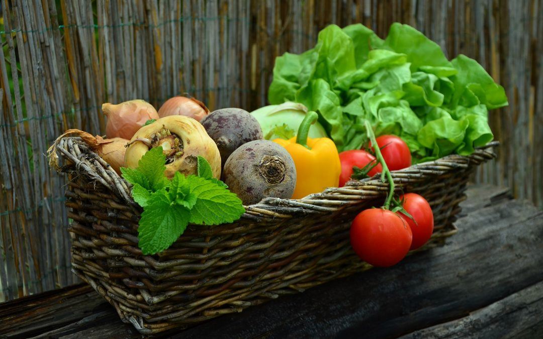Here are 7 Things to Do With Your Extra Garden Veggies: From Pickling to Potlucks