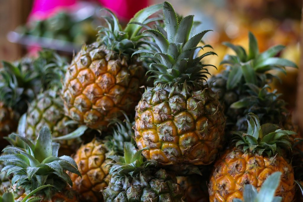 How Do Pineapples Grow?