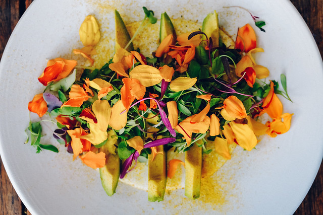 Most Popular Edible Flowers (And How to Eat Them)