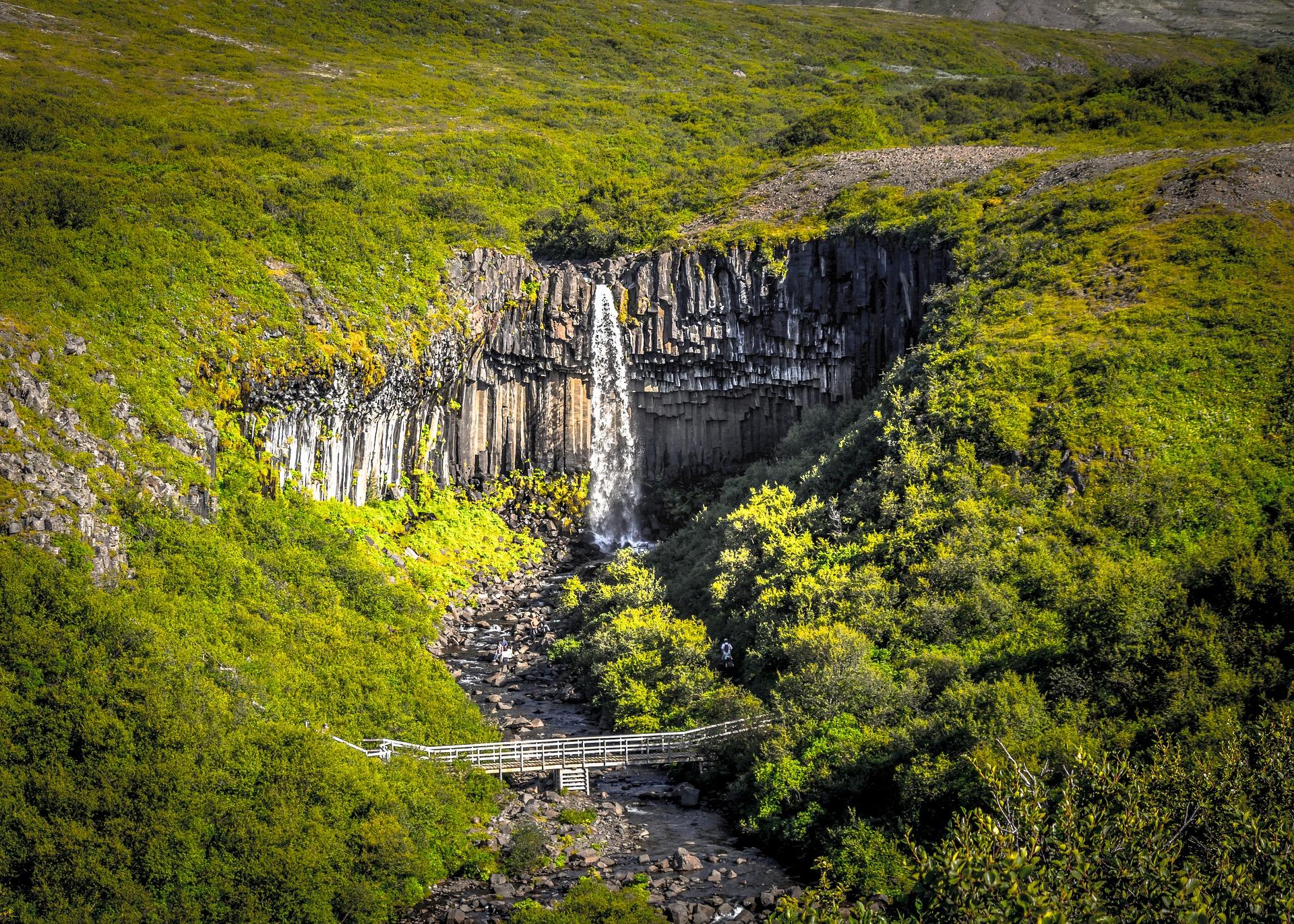 iceland trees, waterfall
