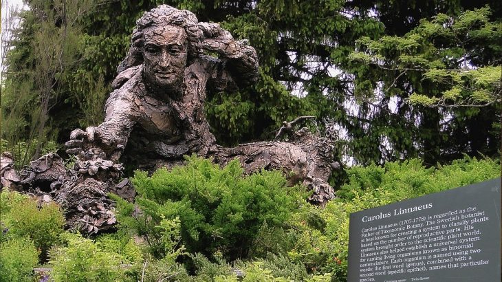 The 5 Most Famous Botanists in History