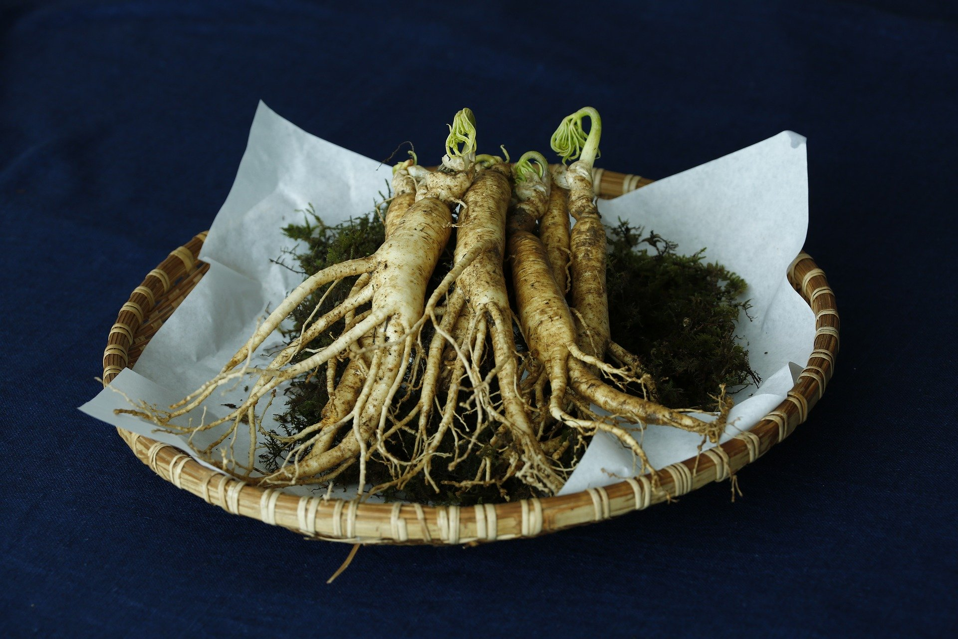 Top Uses for Ginseng