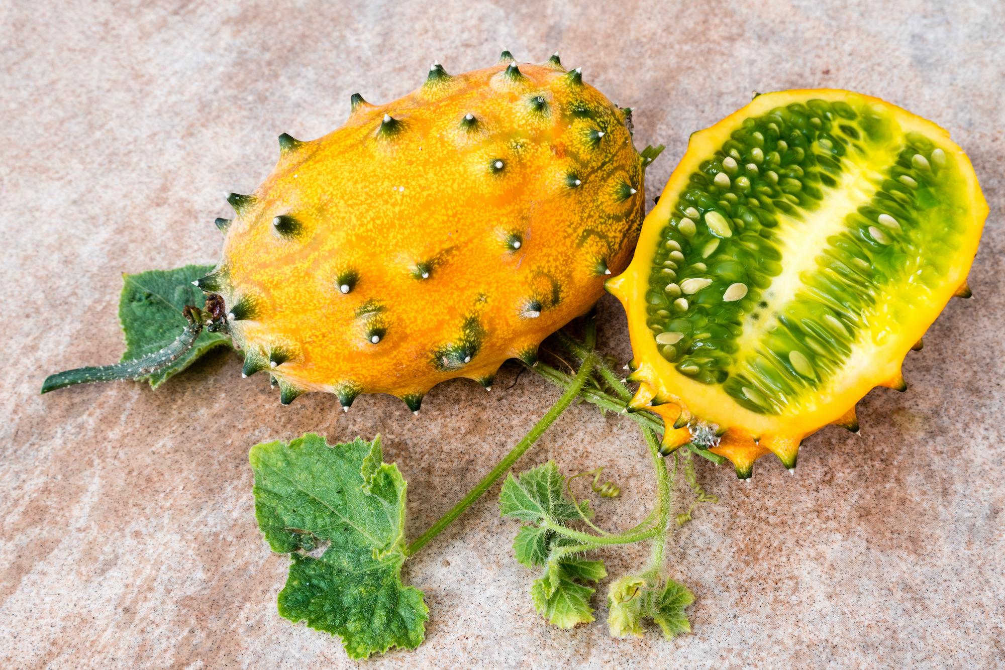 Horned Melon - Cucumis metuliferus