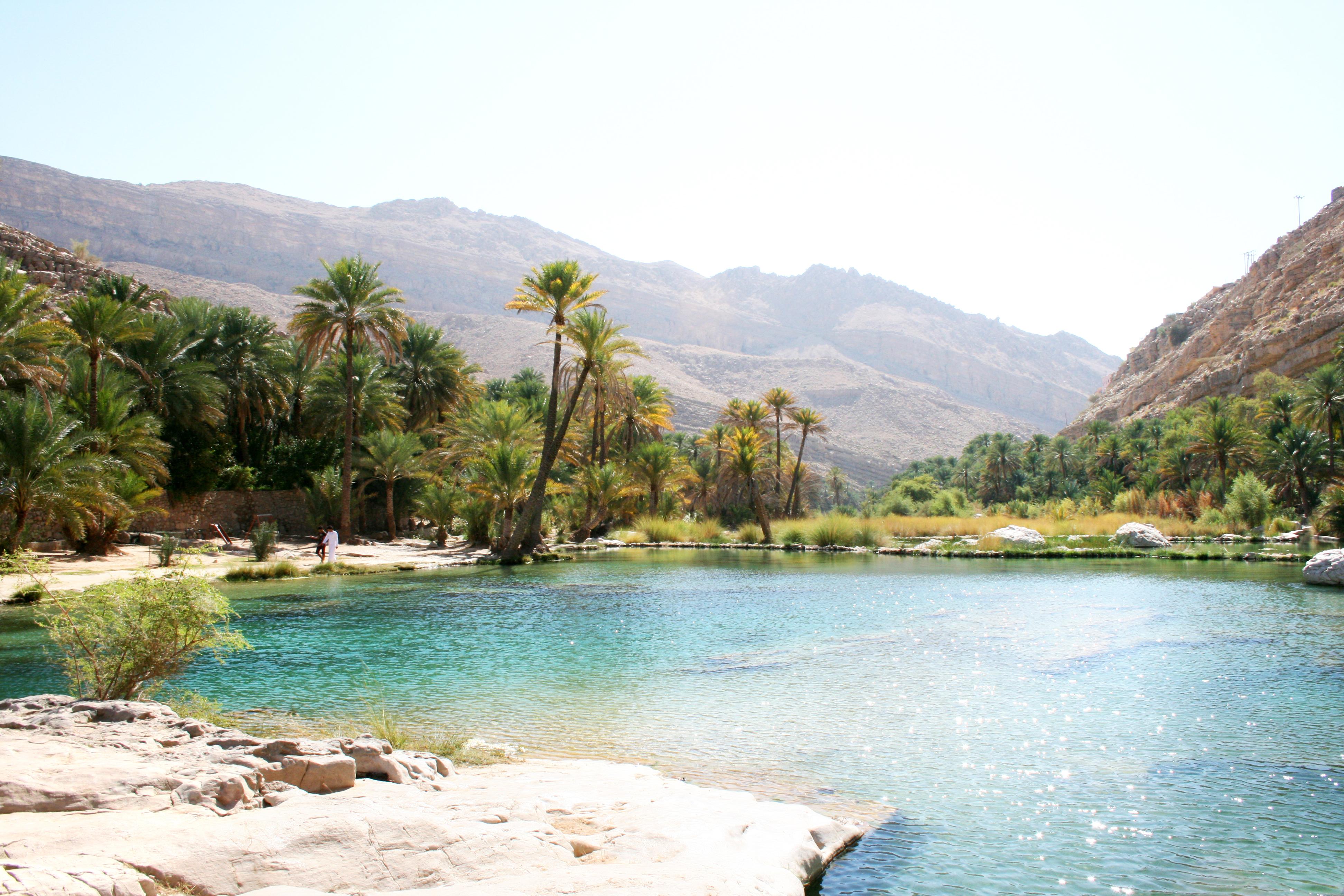 desert lake oasis