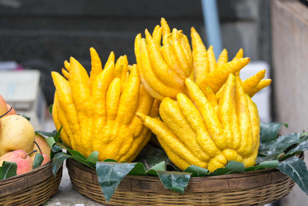 Buddha's Hand Lemons