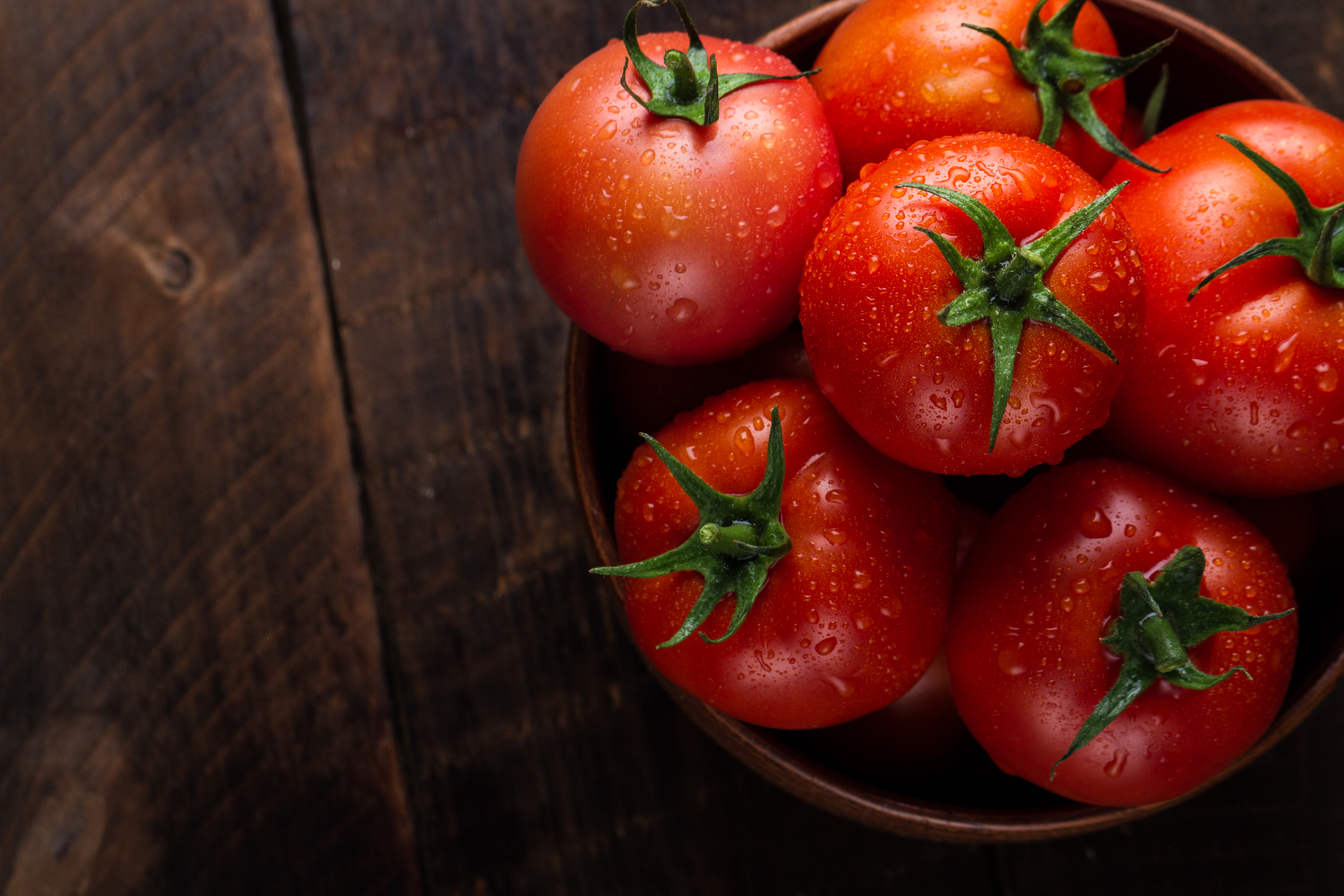 Step-by-Step Guide To Grow Tomatoes at Home According to the HEINZ Tomato Experts